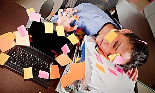 领导办公室放什么花养生_【办公室OL最需要的5个养生好习惯】1、保证