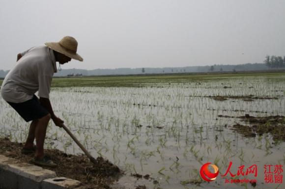 黄河故道节约集约用地之农业篇