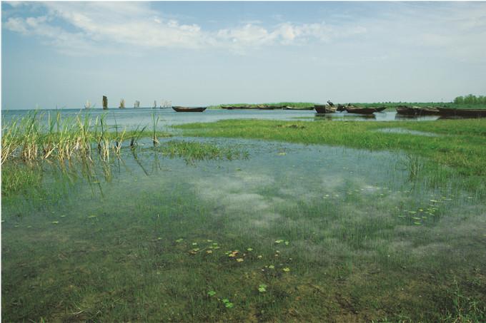 骆马湖水环境生态保护