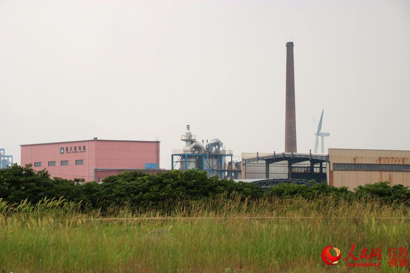 高清:探访如东小洋口滩涂 保护区紧邻化工厂