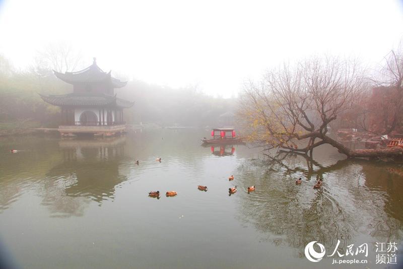 大雾笼罩江苏如皋水绘园 烟影如画似仙境