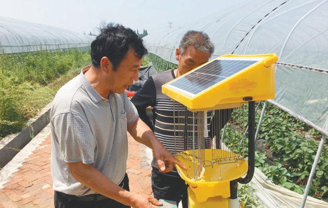 无锡农民用太阳能灯诱捕害虫 效果良好