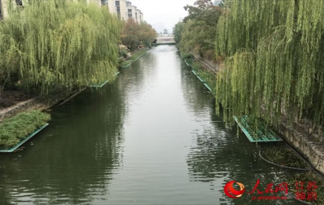 国际水协会第二运营中心落户南京生态科技岛