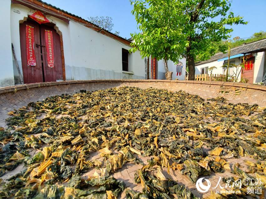 访安徽巢湖姥山岛:亿年火山沉淀渔家风情