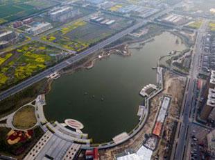 中国制造有多牛?全世界三成提琴产自江苏黄桥