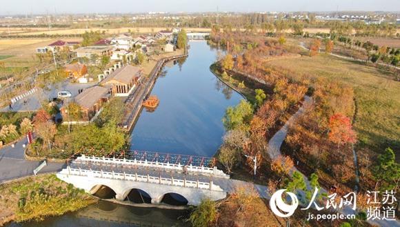 精彩:泰州姜堰小杨村创新家庭农场模式打造田园牧歌村庄