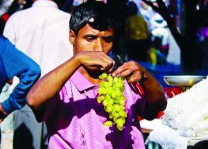 想吃葡萄要抓紧 新疆跟团游国庆后将下架