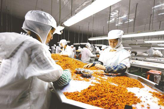 盐城蔬菜出口量价攀升 脱水蔬菜增幅最大