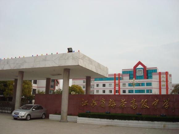 当地政府不惜重金,聘请东南大学规划设计院专家,对栟茶古城保护进行了
