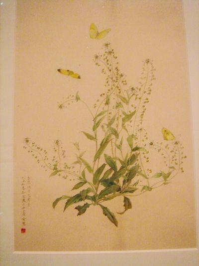六年级美术画画图片梨花