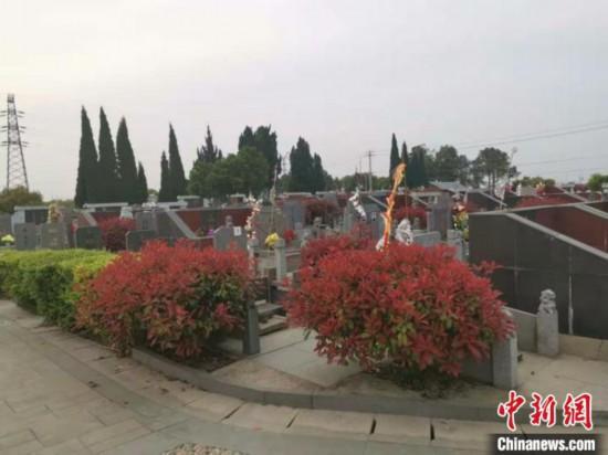 """探�L常州金��公墓:""""干部�^""""�俗R牌已被撤除"""